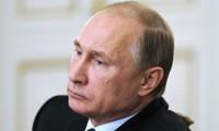 Poutine invite «des experts britanniques» pour une coalition anti-Etat Islamique