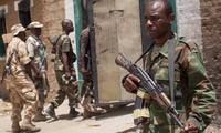 Nigeria : l'armée libère 31 otages des mains de Boko Haram