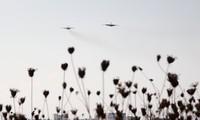 Plus de 150 villes et villages syriens libérés