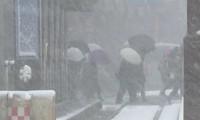 Circulation bloquée en République de Corée et au Japon à cause de la neige