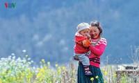 Le printemps est revenu à Lung Cu, à l'extrême-nord du Vietnam