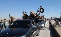 L'Allemagne a les données personnelles de membres du groupe État islamique