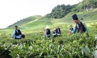 Mobiliser les ressources pour développer les régions montagneuses