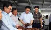 Kiên Giang appelé à intensifier la restructuration agricole