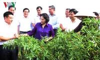 Nguyên Thi Kim Ngân inspecte la nouvelle ruralité à Lang Son