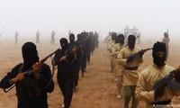 Les forces progouvernementales libyennes maintiennent la pression sur l'EI