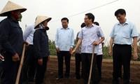 Vu Duc Dam discute avec les autorités de Bac Ninh de l'hygiène alimentaire