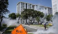 Singapour annonce 9 nouveaux cas d'infection au virus Zika