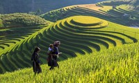 Semaine culturelle et touristique des champs en terrasses de Mù Cang Chải