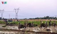 Rizières en danger: les soldats et les jeunes se mobilisent