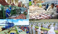 Des experts étrangers évaluent positivement la croissance économique du Vietnam