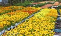 Les villages horticoles au Vietnam