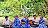 Le «don ca tài tu», un art traditionnel vietnamien
