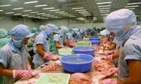 Mendorong kerjasama ekonomi dan perdagangan Vietnam Selandia Baru