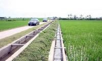 Provinsi An Giang bergotong royong membangun pedesaan baru