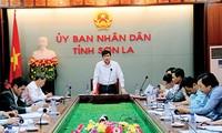 Pola koperasi dalam pembangunan pedesaan baru di provinsi Son La