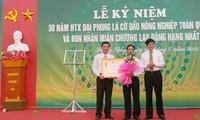 Daya hidup Koperasi Dai Phong