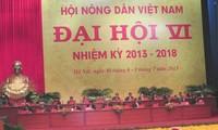 Himpunan Tani Vietnam menjadi poros dalam gerakan pembangunan pedesaan baru