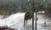 PBB membantu Filipina mengatasi akibat taupan Haiyan