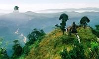 Semangat memasuki kehidupan dari mazhab agama Buddha Truc Lam Yen Tu