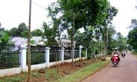 Pengalaman mengerahkan tenaga rakyat dalam pembangunan pedesaan baru di provinsi Dac Lac
