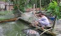 Provinsi Tay Ninh mengembangkan semua sumber daya untuk membangun pedesaan baru