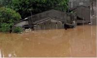 Provinsi Dien Bien berfokus mengatasi akibat bencana banjir