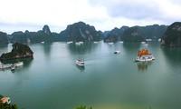 Vietnam berupaya mengkonservasikan dan mengembangkan pusaka teluk Ha Long