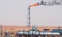 OPEC memutuskan mempertahankan hasil produksi minyak tambang seperti semula