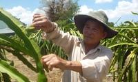 Prajurit penyandang cacad Truong Van Kiet pandai melakukan usaha ekonomi dan aktif ikut dalam aktivitas sosial