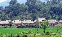 Pembangunan pedesaan baru di kampung halaman revolusi