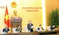 Komite Tetap MN Vietnam angkatan ke-13 memberikan pendapat terhadap Undang-Undang tentang Organisasi MN