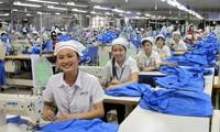 Kaum pekerja kota Ho Chi Minh memberikan keuntungan sebesar kira-kira 106 miliar dong Vietnam kepada Negara