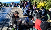 Republik Czech memberikan bantuan keuangan kepada negara-negara penerima migran di garis depan