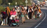 Austria memutuskan meninjau surat permintaan mengungsi di garis perbatasan