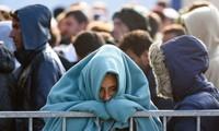 Austria memperketat kontrol terhadap kaum pengungsi