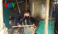 Ketua Koperasi Ma A Nu, warga etnis minoritas Mong dan impian mencapai kemakmuran