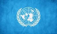 Lokakarya simulasi PBB di Vietnam