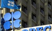 OPEC melakukan sidang pada September untuk mencari cara menstabilkan pasar minyak tambang