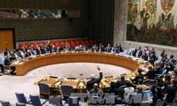 Dewan Keamanan PBB memperpanjang pekerjaan investigasi senjata kimia di Suriah