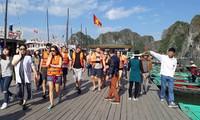 Lebih dari 26.000 wisatawan mengunjungi Teluk Ha Long pada kesempatan tahun baru