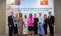 Memperkuat konektivitas badan usaha Vietnam-Afrika Selatan