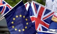 Majelis Tinggi Inggris melakukan pemungutan suara menolak rekomendasi referendum tentang Brexit kedua