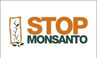 Grup Monsanto harus bertanggung-jawab memecahkan akibat terhadap lingkungan hidup di Vietnam