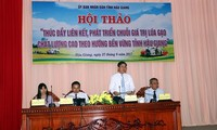 "Provinsi Hau Giang: Lokakarya ""Mendorong konektivitas, mengembangkan rantai nilai perberasan bermutu tinggi menurut arah berkesinambungan"