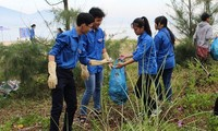Kira-kira 500 anggota Liga Pemuda dan pemuda ikut serta dalam Kampanye Laut Biru Vietnam