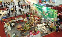 Dua puluh negara dan teritori ikut serta dalam Pameran Viet Nam Manufaturing Expo 2018