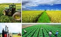Memperkuat restrukturisasi untuk mengembangkan pertanian yang modern dan berkesinambungan