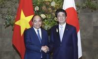 Pembicaraan tingkat tinggi Viet Nam-Jepang