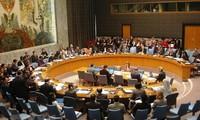 Masa empat puluh dua tahun Viet Nam ikut serta dalam PBB: memasang layar mengarung lautan